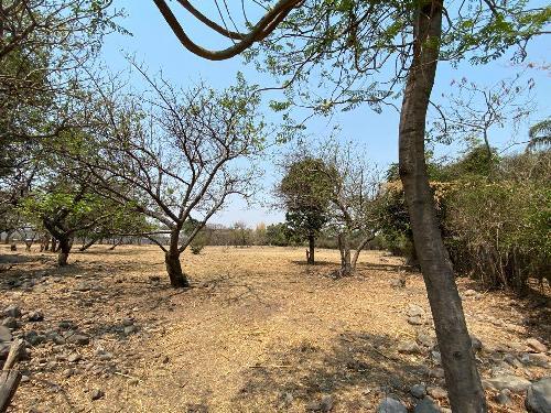 Terreno Venta en SAN JUAN, Zacualpan De Amilpas Morelos