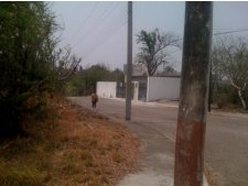 Terreno Venta en FRACC SANTA FE, Xochitepec Morelos