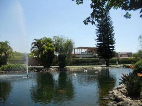 Terreno Venta en Residencial sumiya, Jiutepec  Morelos