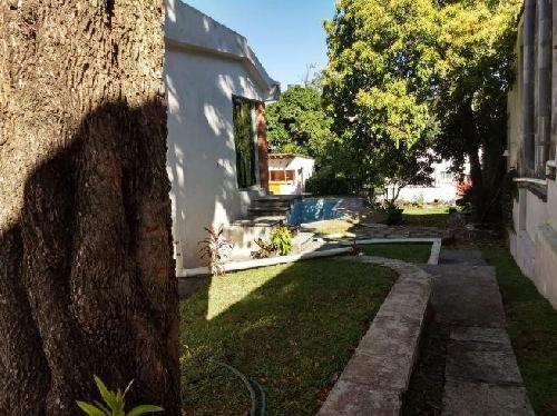 Terreno Venta en Centro, Cuernavaca Morelos