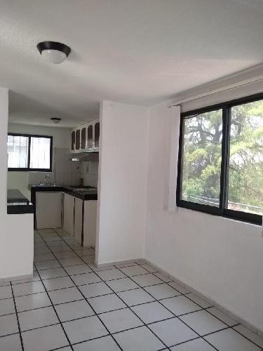 Departamento Renta en Guacamayas, Cuernavaca Morelos