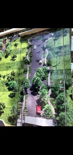 Terreno Venta en palmira, Cuernavaca Morelos
