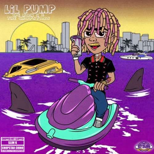 Various Artists - Lil Pump (ChopNotSlop Remix)