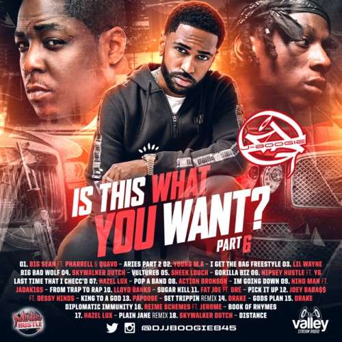 Various Artists - Is This What You Want 6
