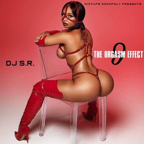 The Orgasm Effect 9 - DJ S.R., Mixtape Monopoly