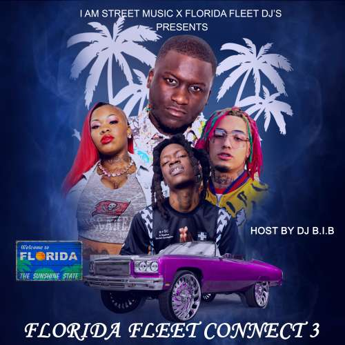 Various Artists - Florida Fleet Connect 3