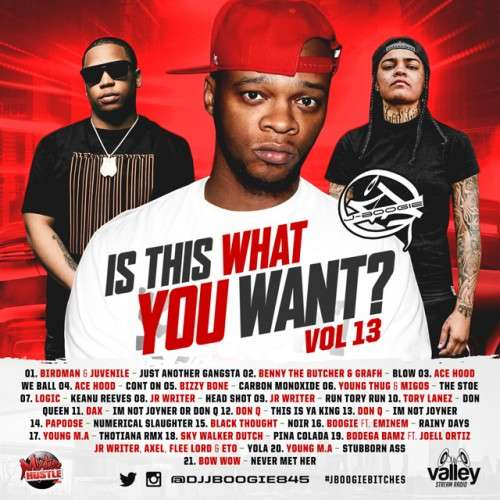 Various Artists - Is This What You Want Vol. 13