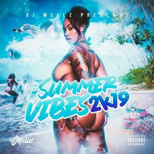 Various Artists - Summer Vibes 2k19